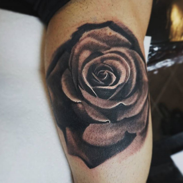 Rose by Alex