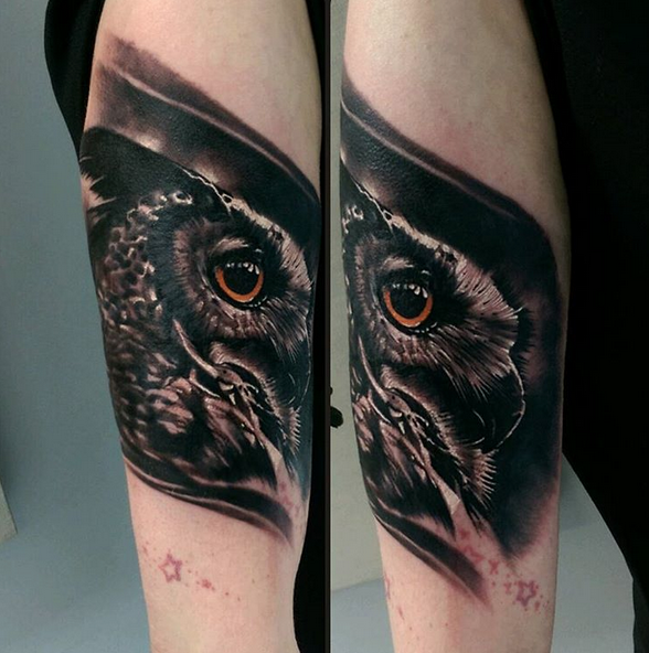 Owl by Robert