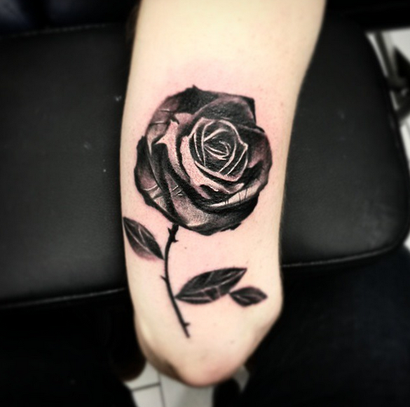 Rose by Robert